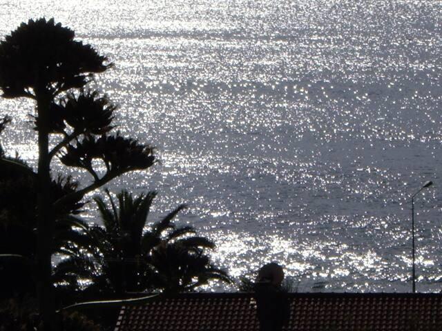 Bord De Mer,150 M De La Plage, Calme et climatisé - Ajaccio - Apartament