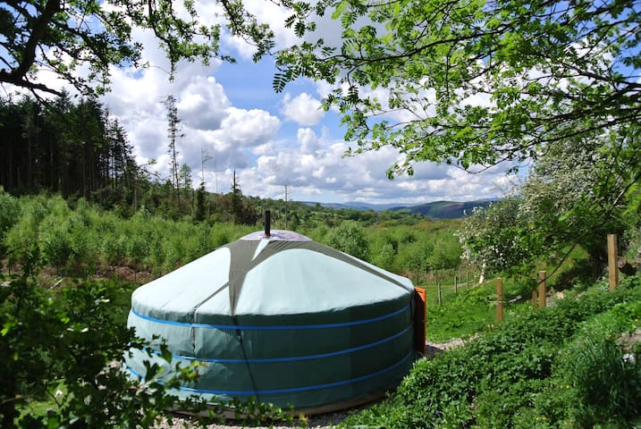 Mongolian Yurt in Berwyn Mountains