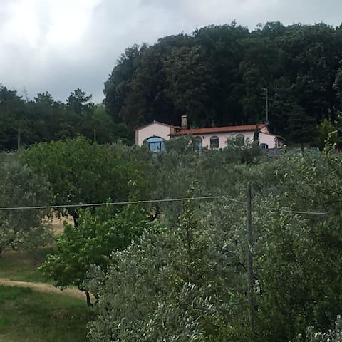 Casa delle nuvole - Prato - Huis