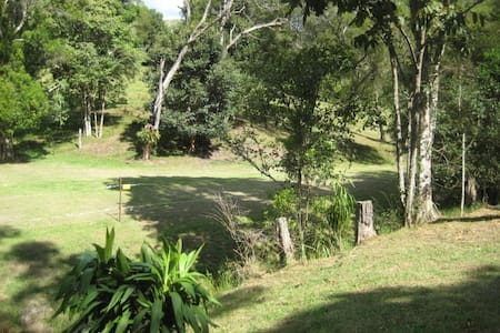 The Cabin at Ellensee - Maleny - Cabin - 2