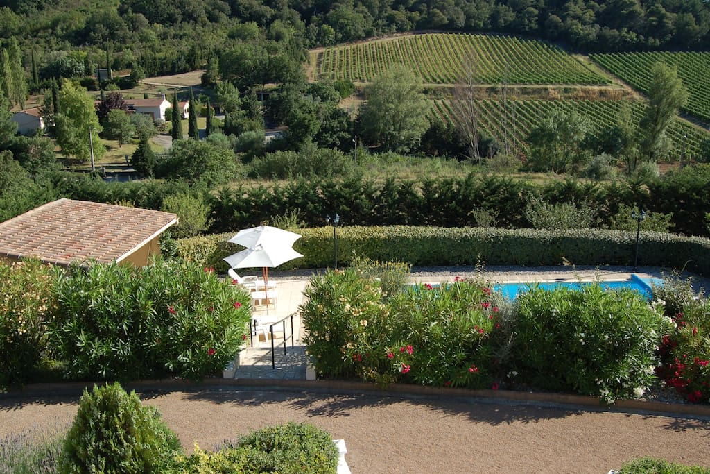 View from the Villa across the Pool Terrace to the vines