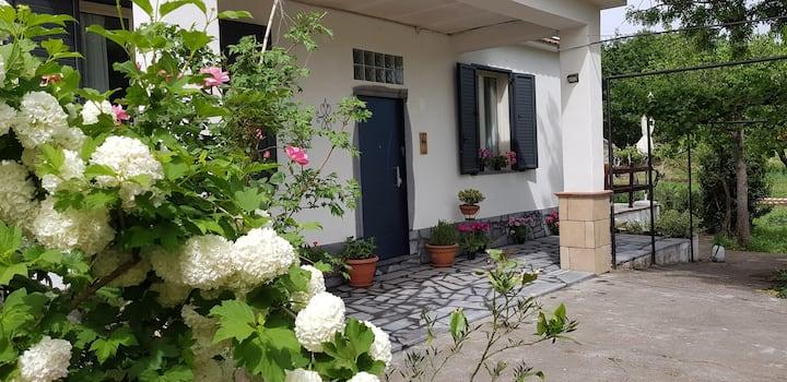 """casa vacanze  """"Etna, Salvia e Rosmarino"""""""