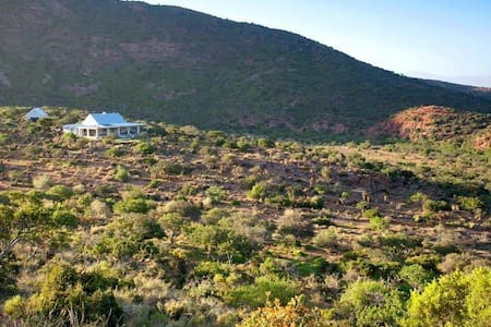 Camp Karoo lodge, amidst mountains and wildlife