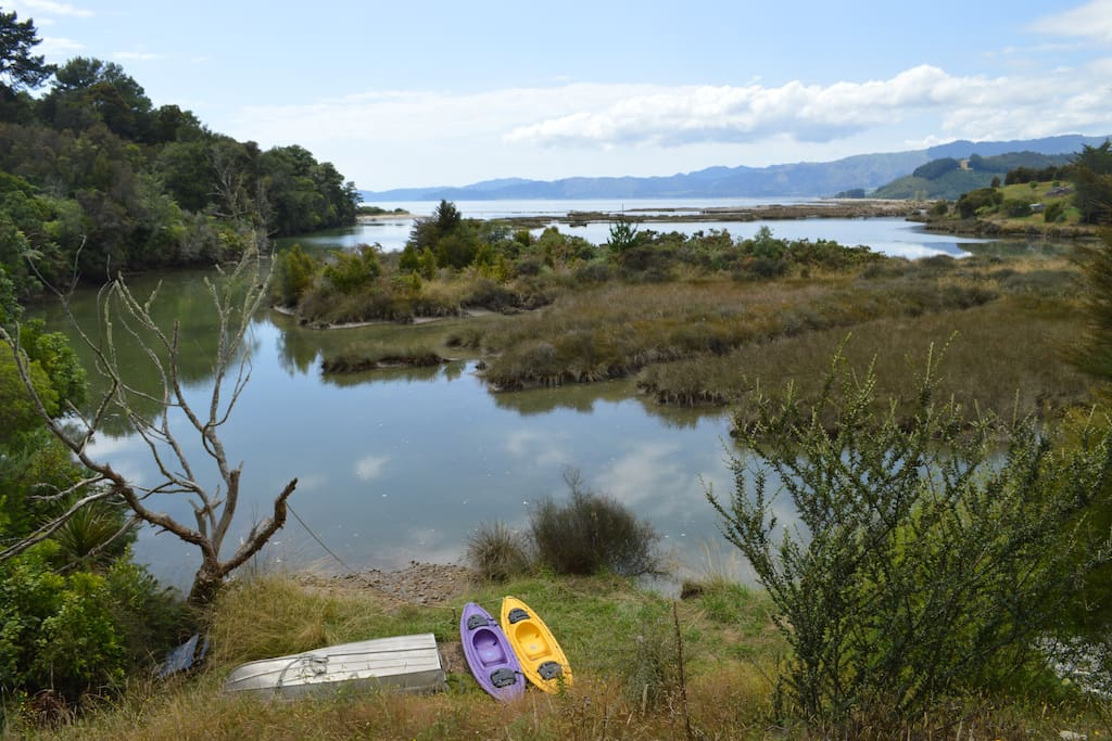 Enjoy the diverse birdsong and forest whilst having a relaxing paddle.
