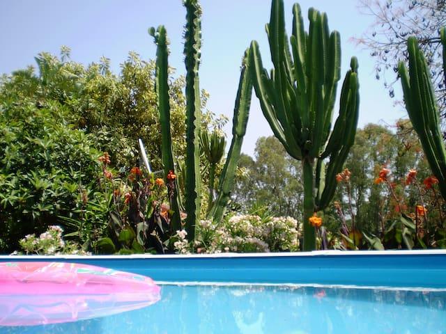 La Fuente Vieja - Infinity garden cottage - Jimena de la Frontera - Casa
