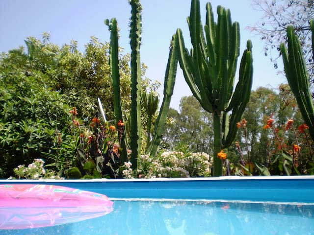 La Fuente Vieja - Infinity garden cottage - Jimena de la Frontera
