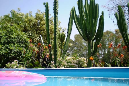 La Fuente Vieja - Infinity garden cottage - Jimena de la Frontera - Ház