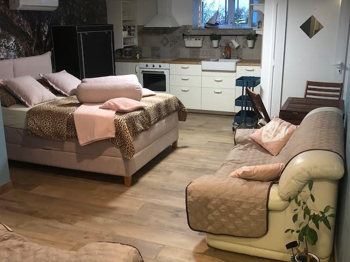 Studio apartman Pod Room