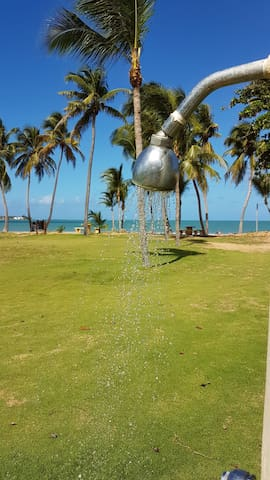 BEACH FRONT/near El Yunque and Golf Course