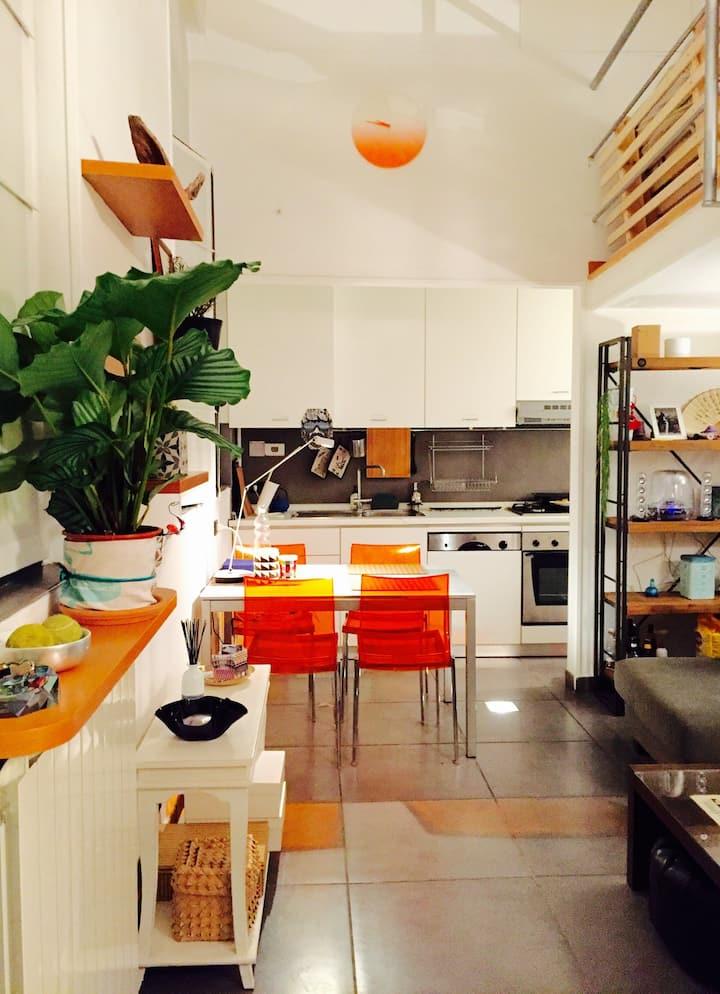 Sharing space in Loft/Terrazzo/CentroMilano