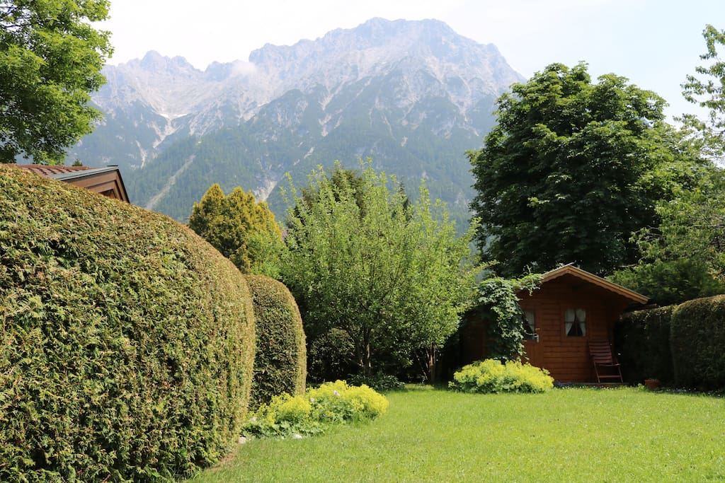 Garden with amazing mountain view
