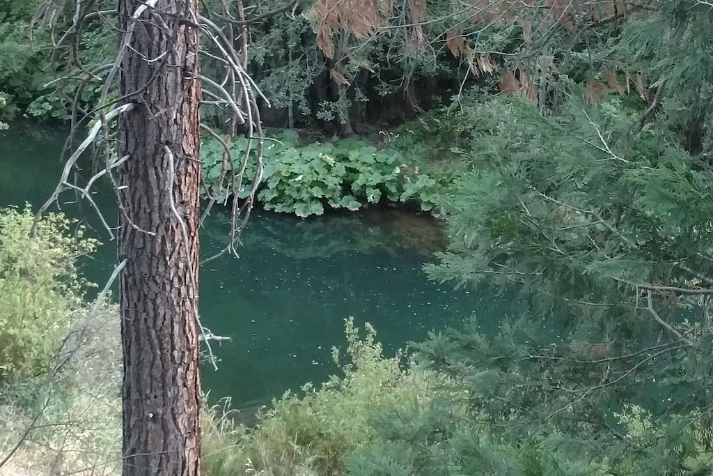 The best swimming hole on Spanish Creek
