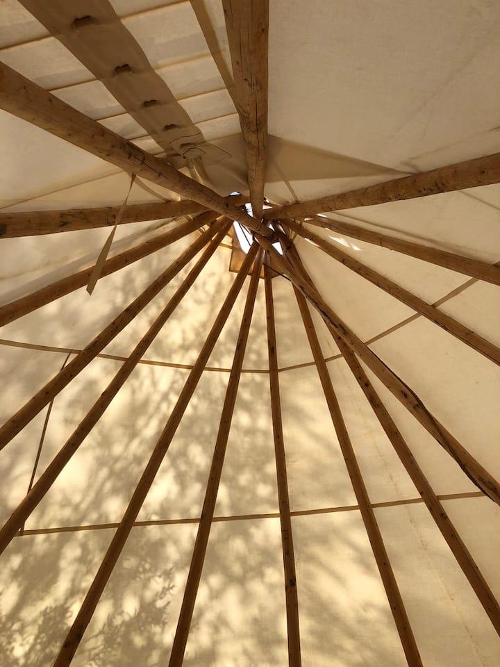 Teton Valley Resort & Campground/Large Tipi 35