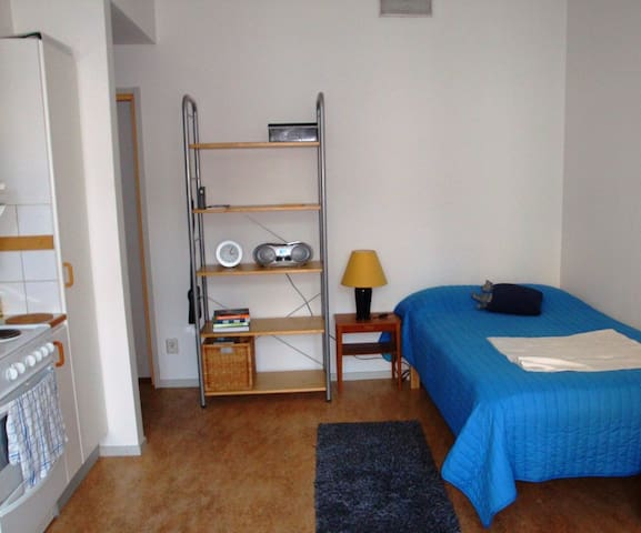 Studio apartment in the heart of Gothenburg - Gothenburg - Leilighet