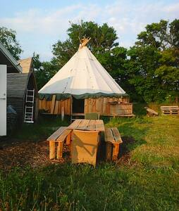 Camping in tipi or tent in organic garden - Stege - Tipi