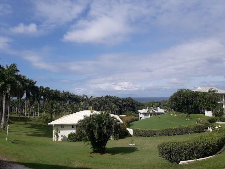 Premium 2BR Ocean View Condominiums in Paradise