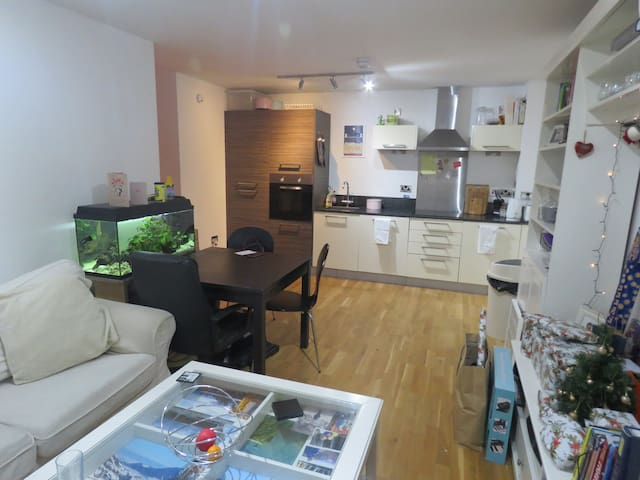 Mordern, light, city centre apartment. - Sheffield - Apartament