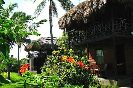 Ital Rest........A Natural Cultural Experience! - Treasure Beach