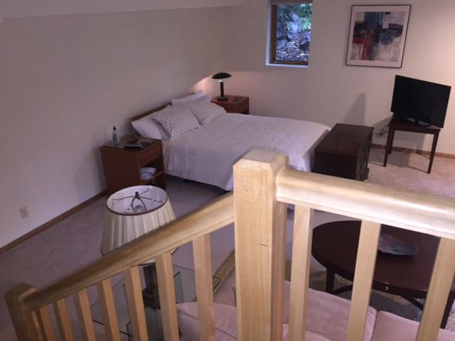 Lower level bedroom with  queen bed  TV and  private full bathroom & small kitchen