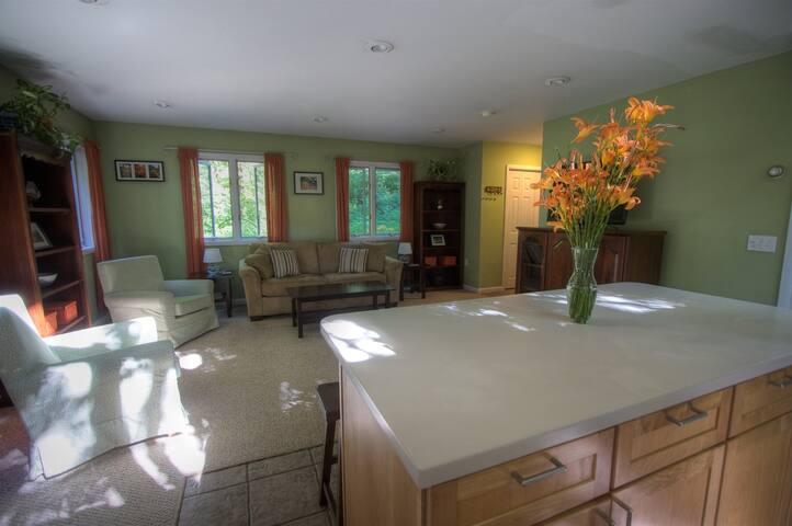 open living room/ kitchen