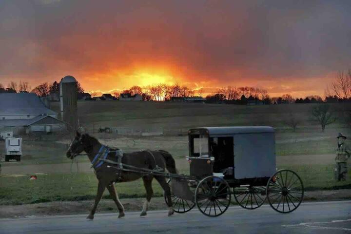 Amish Area River Cabin