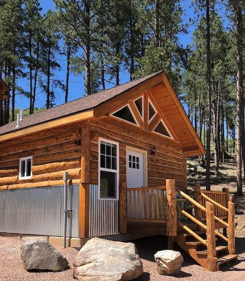 Big Mountain Cabins - Cabin #1