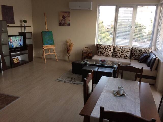 Sunny and cosy flat, pets welcome
