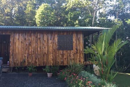 NEW! Mountain cabin Bed and Breakfast - San Isidro de El General - Pousada