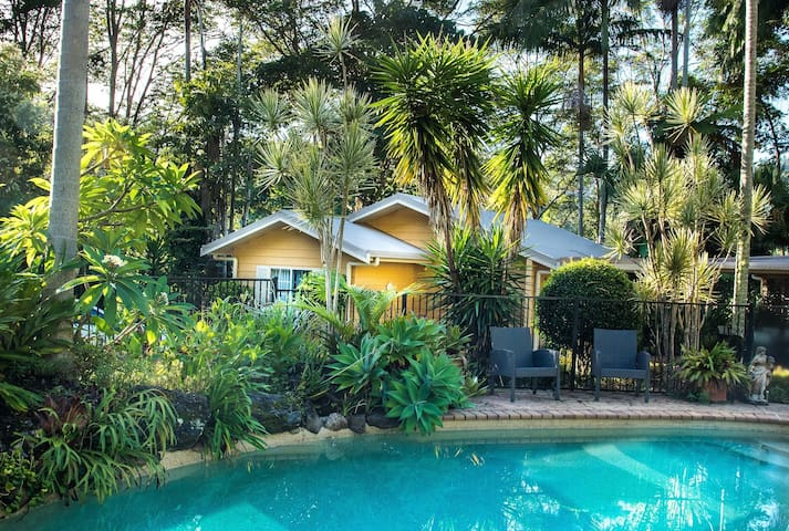 Rainforest Cottage in Beautiful Currumbin Valley