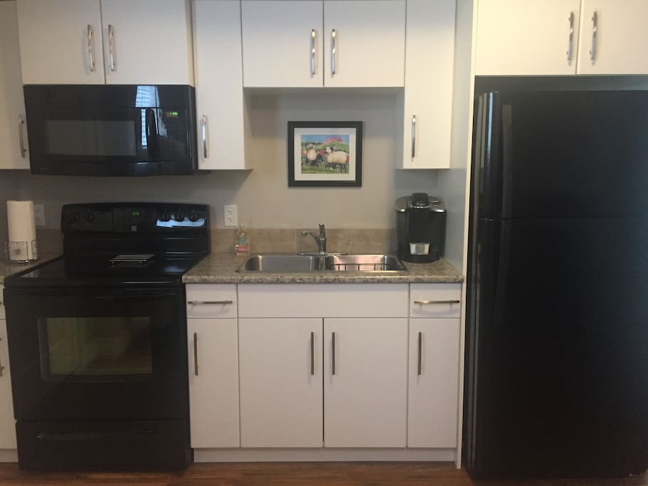 Full kitchen with electric range, microwave, and fridge