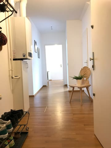 Bright Apartment near the Town Hall of Vienna