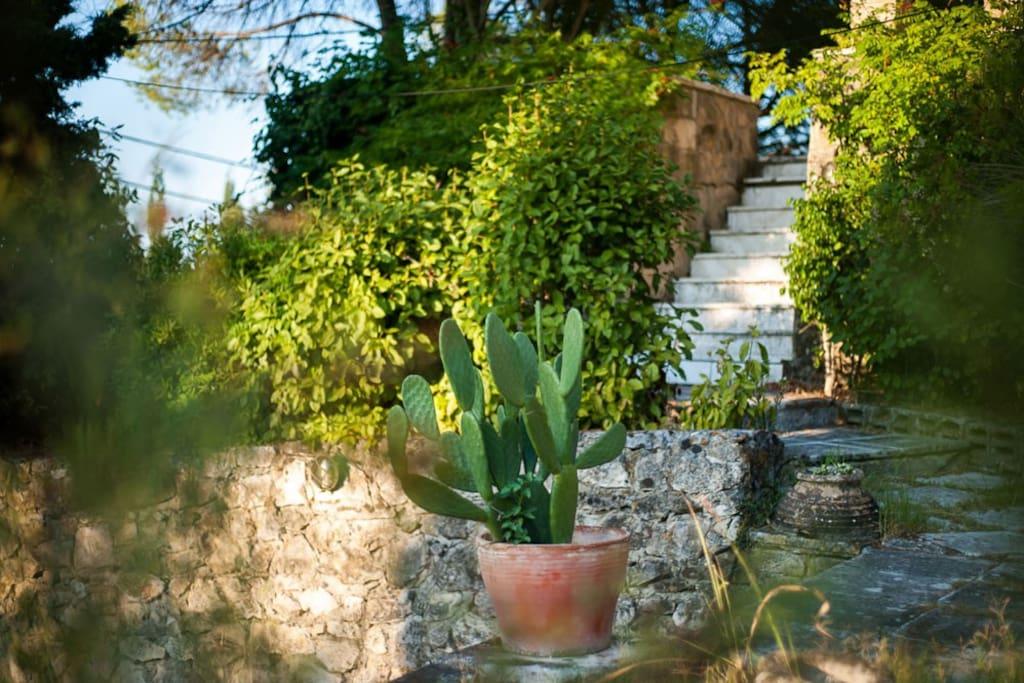 Villa Celeste entrance
