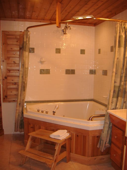 Cherry Room Bathroom spa tub for two with shower