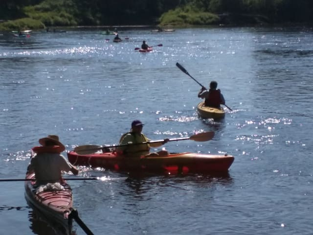 Nearby kayak rentals in Bethel.