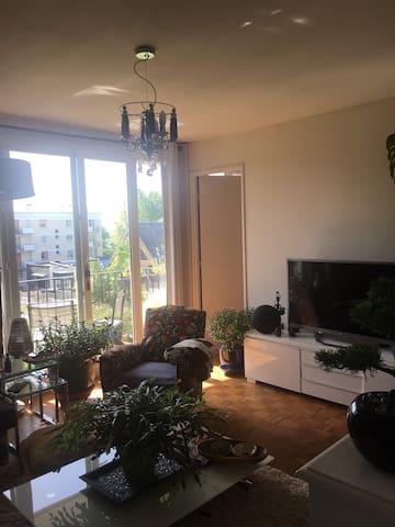 Appartement coquet tout confort,balcon agréable