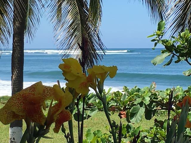 Casa Vista Mar Playa Saladita Oceanfront Pool Surf