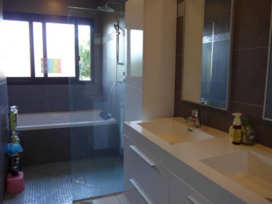 Salle de bain principale avec douche et baignoire