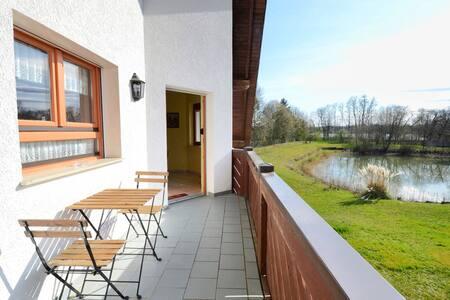 Apartment  Strasbourg-Europapark-Schwarzwald 97 sq
