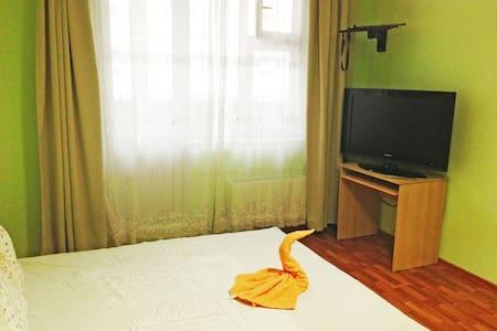 Сдаётся однокомнатная квартира - Московский - Lägenhet
