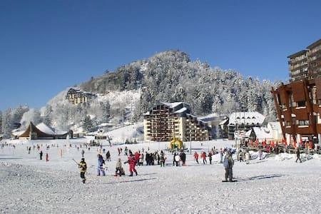 studio balcon centre station vue sur pistes de ski - Laveissière