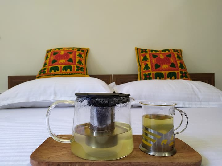 Shimla Gypsy - Oak Room (Women Friendly)