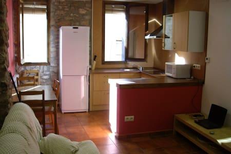 Lloguer de casa a Talarn. - Talarn - Apartamento