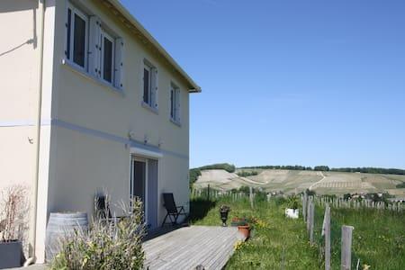 À SANCERRE Résidence coeur vignoble vue sur Loire