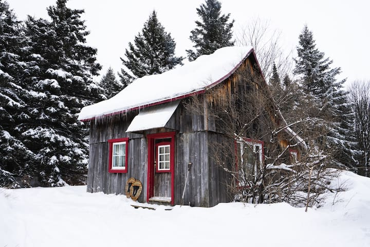 Warm and welcoming rustic cabin