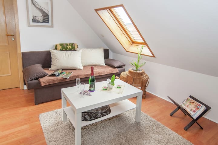 Komfortable Mansardenwohnung in Ilmenau in Waldnähe