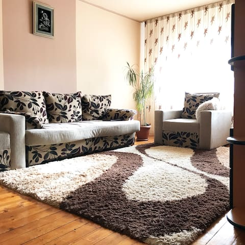 Bright and cozy two room apartment in Oradea