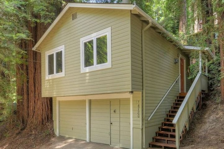 Retreat in the Redwoods