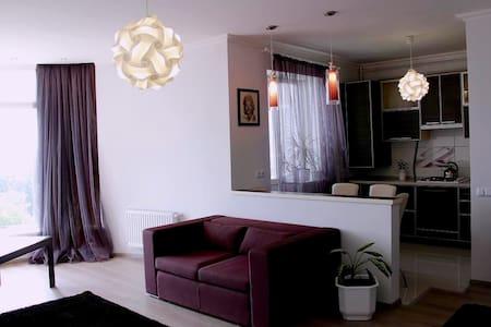 Центр, квартира с отличным ремонтом, WiFi - Sumy