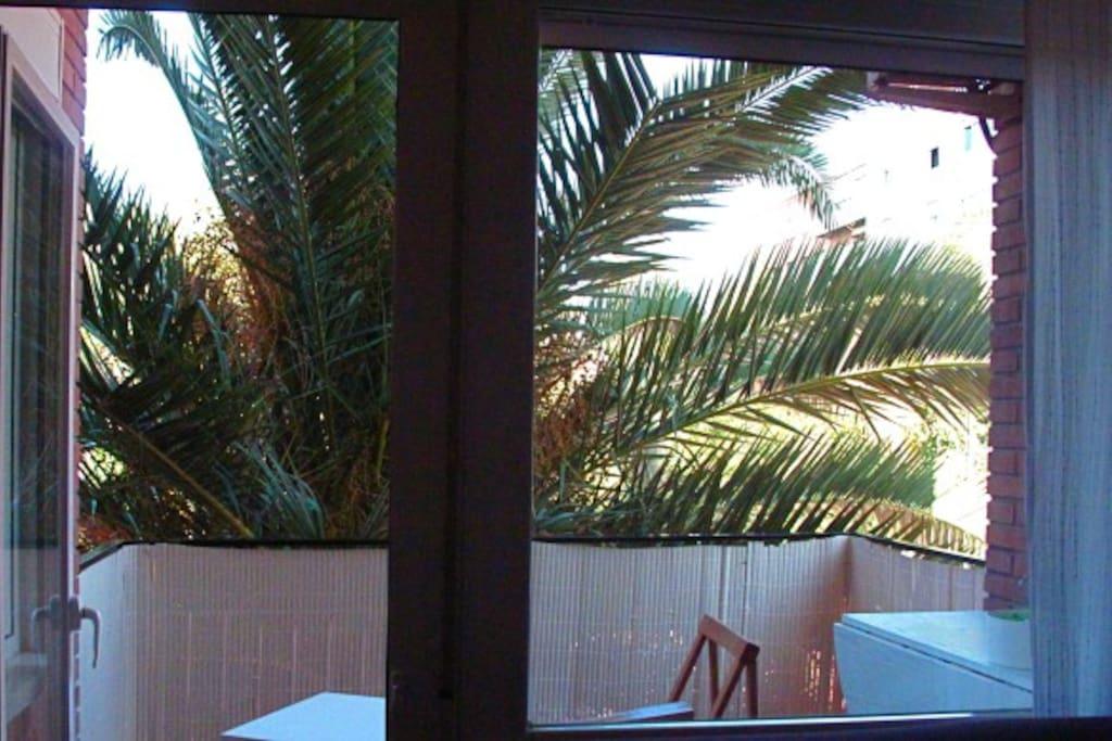 terraza soleada  y gran privacidad