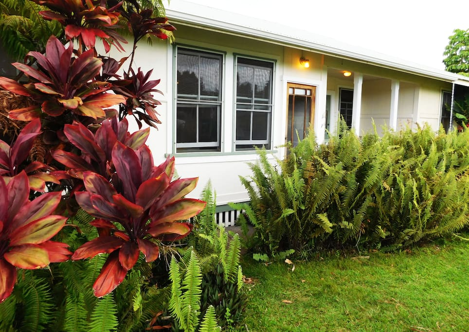 Colorful crotons welcome you to a classic plantation cottage. Photo by William Neal